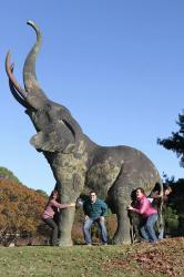 MMB -- my kids holding up the UA elephant.